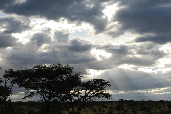 Encounter Mara, Asilia Africa: Stunning views