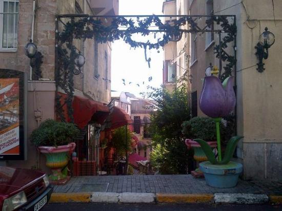 Fransiz Sokagi : Entrance view 1