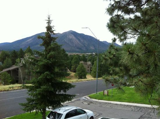 Wyndham Flagstaff Resort: View from room