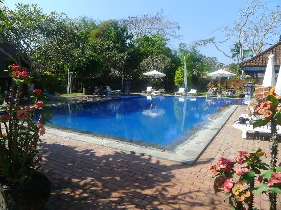 Laghawa Beach Inn: Pool.