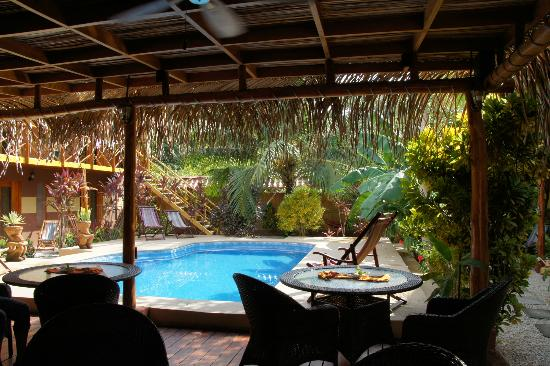 Samara Palm Lodge : Lounge und Pool