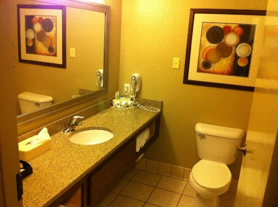 Holiday Inn Express Onalaska (La Crosse Area): Sink