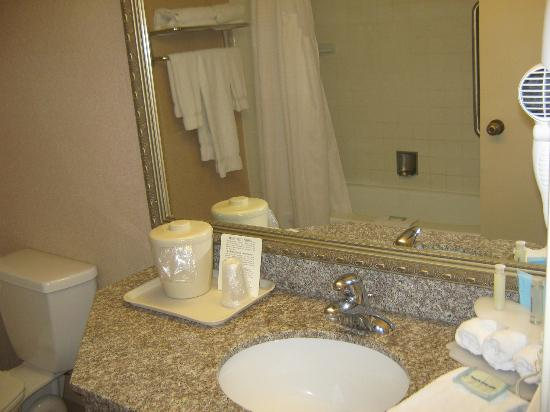 Holiday Inn Express Toronto East: Bathroom Area