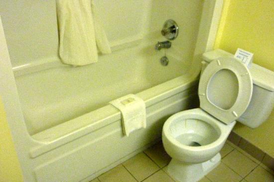 Peachtree Inn: salle de bains