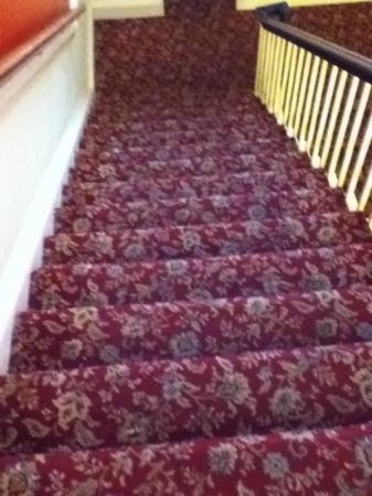 Barry's Hotel: moquette antica delle scale