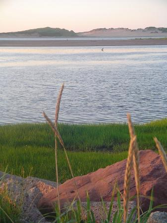 Water's Edge Bed & Breakfast: Cycle to nearby Covehead Harbor