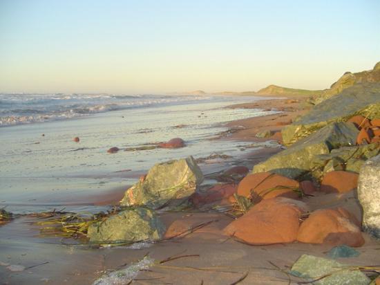 Water's Edge Bed & Breakfast: Walk on Lakeside Beach