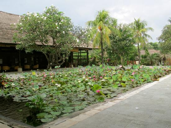 Belmond Jimbaran Puri: Lilly Pond on hotel grounds