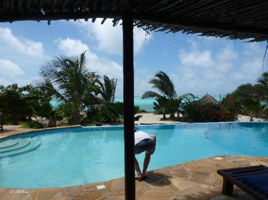 The Zanzibari : Vue de la piscine