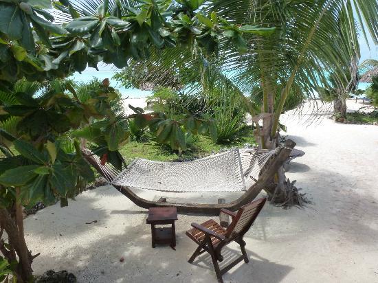 The Zanzibari: La détente...