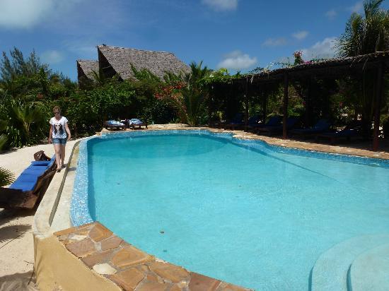 The Zanzibari: La piscine
