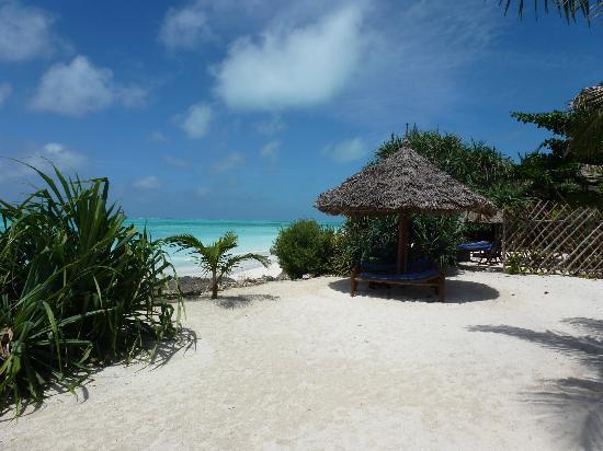 The Zanzibari: Vue imprenable sur la mer