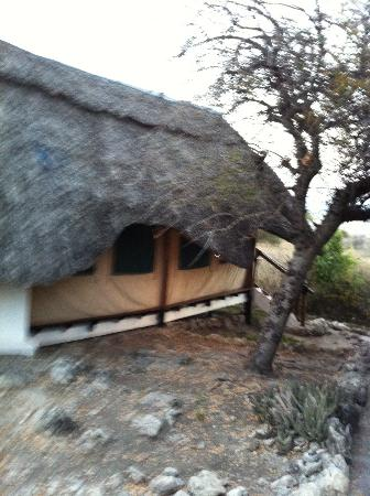 Manyara Wildlife Safari Camp: tent