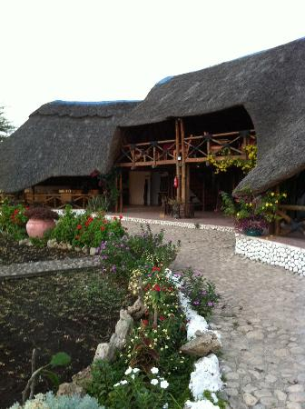 Manyara Wildlife Safari Camp: main lobby and dining area