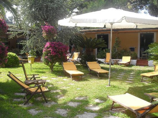 Hotel Villa Angela: giardino