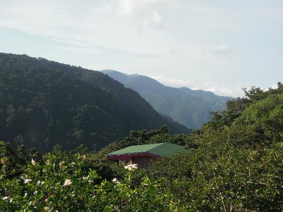 Rainbow Valley Lodge: View of top of our cabin and surrounding countryside