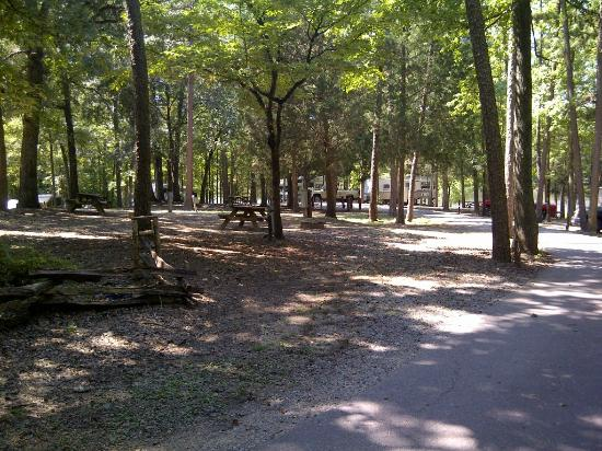 Andrew Jackson State Park: Campground
