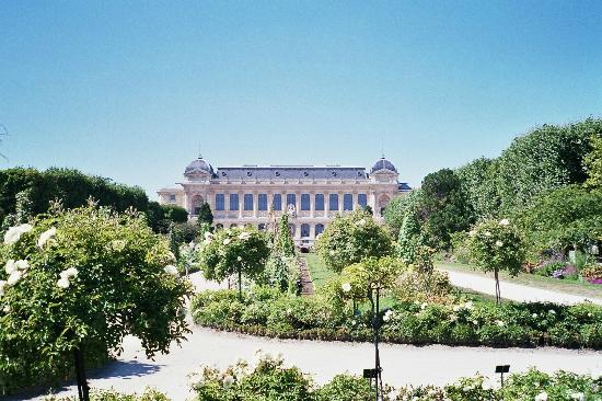 vue de l 39 entr e principale picture of jardin des plantes paris tripadvisor. Black Bedroom Furniture Sets. Home Design Ideas