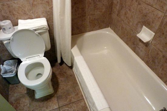 هوتل لو فويجر دي كويبيك: salle de bain 