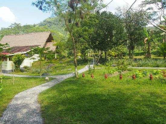 Darmada Eco Resort : 2
