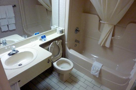 Comfort Inn Sherbrooke: salle de bains