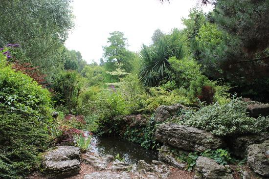 St. Clement, UK: Garten im hinteren Bereich