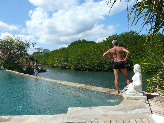 Mimpi Resort Menjangan: pool view on laguna