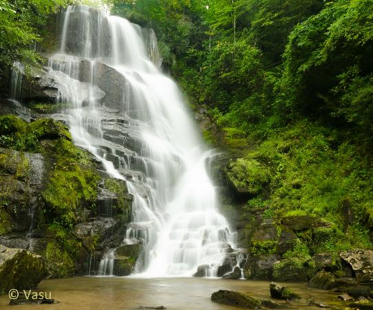 Miller's Land of Waterfall Tours: eastatoe