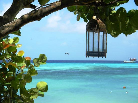 Posada Tropicana: Scorcio dell'isola
