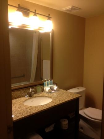 Holiday Inn Express Hotel & Suites Courtenay Comox Valley SW: Terrific shower and well-stocked bathroom