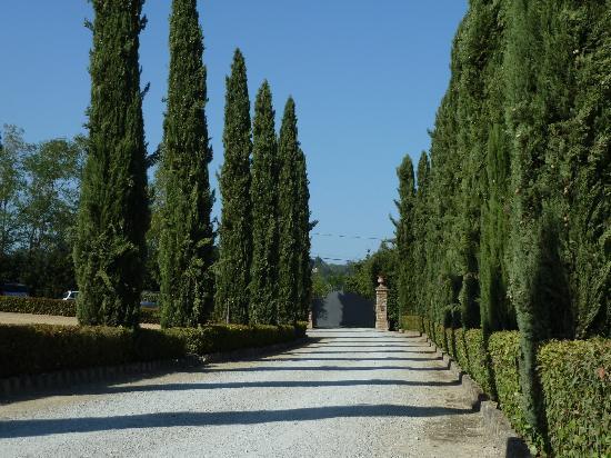 Santa Maria a Poneta: entrée