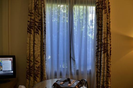 Residence du Roy Hotel: finestra!
