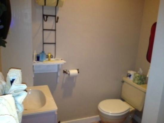Harren Brook Inn and Lodge: Bathroom in Funny Cide Room ....big shelving unit out of view