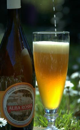 """Il Castagno : Alba rossa birra di Castagne """"castagne di nostra produzione"""""""