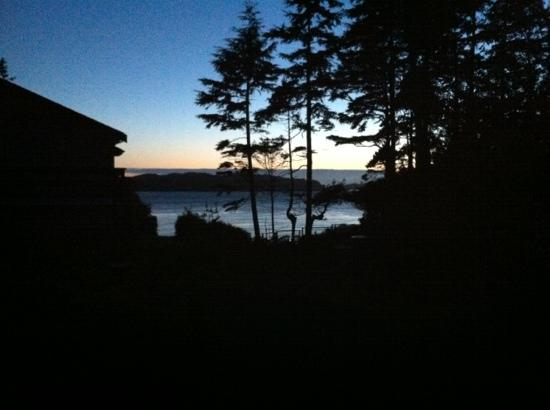 Blue Bear Bed and Breakfast: view from our room