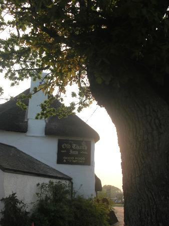 The Old Thatch Inn: The Old Tatch Inn, Cheriton Bishop.