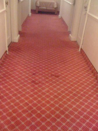 Cannes Palace Hotel : stained carpet in corridor