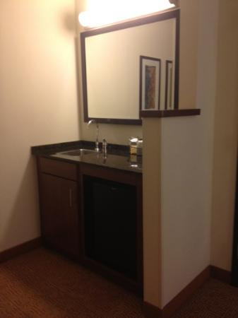 Hyatt Place Atlanta-East/Lithonia: wet bar