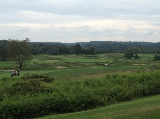 P.B. Dye Golf Club: View of the course