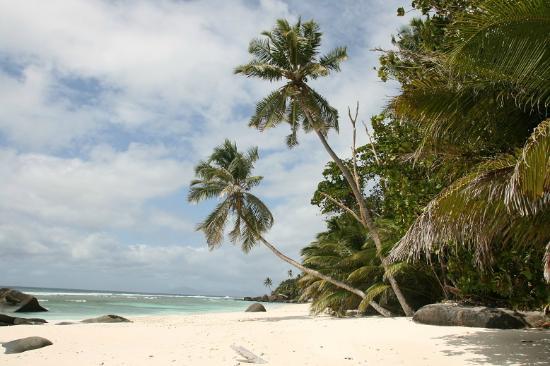 les superbes plages de silhouette picture of hilton seychelles labriz resort spa silhouette. Black Bedroom Furniture Sets. Home Design Ideas