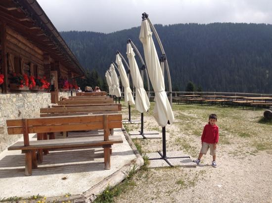 Mezzano, Italy: Agritur malga Lozen
