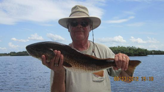 "Pirates Pointe Resort: 29 1/2"" redfish"