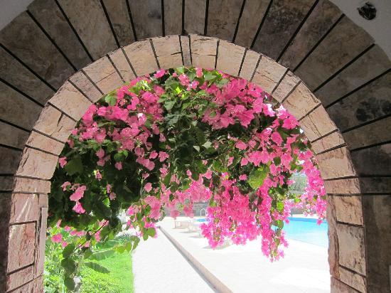 Aggeliki's Diamond Studios: Cycladic architecture and bouganvillea