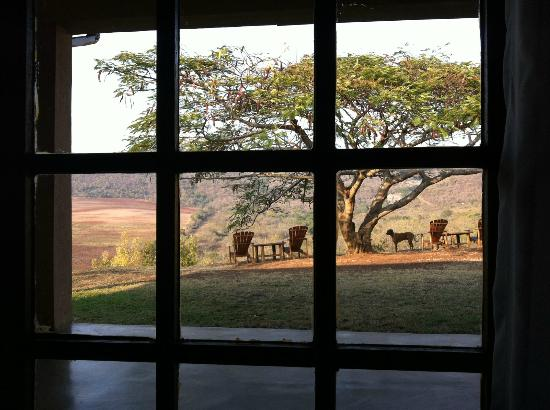 Abangane Guest Lodge: Perfect outlook in the morning
