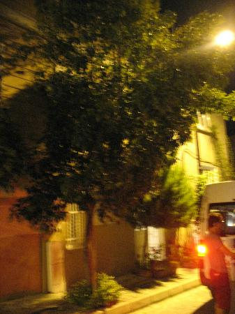 Antique House: ingresso dell'hotel by nigth!