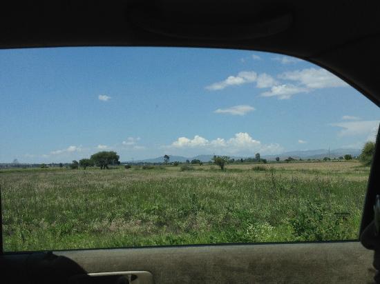 Villas La Hacienda: Feld