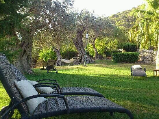 finca es castell tumbonas del jardin junto a la piscina
