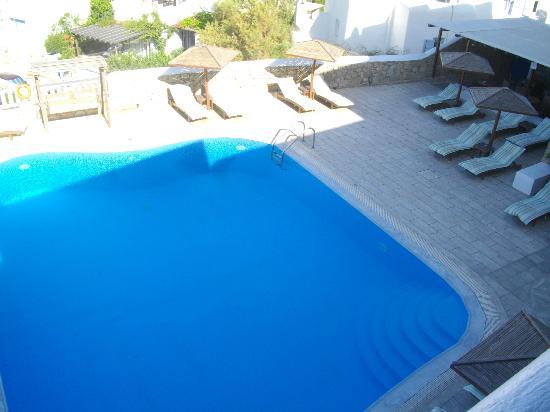 Hotel Eva: piscina