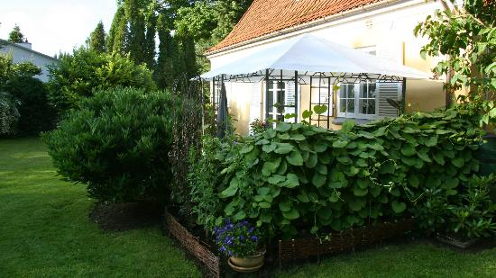 Rungsted Bed and Breakfast: Outside breakfast area.