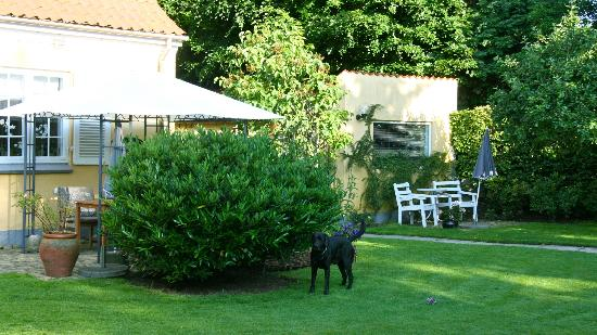 Rungsted Bed and Breakfast: The front garden.